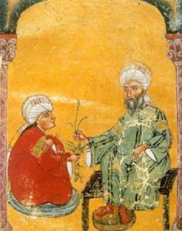Pedanio Dioscórides Anazarbeo