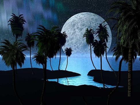 月下獨酌 - Bebiendo solo bajo la luna -- 李白 - Li Bai